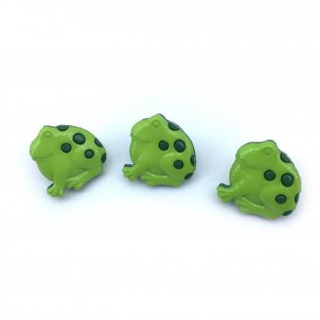 Żabka zielona
