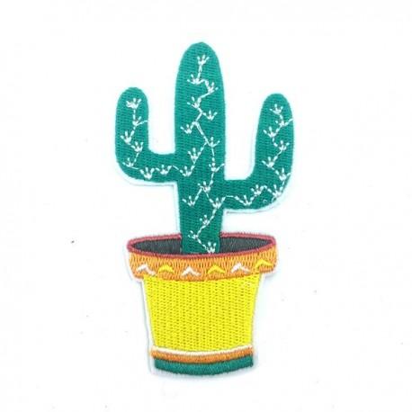 Kaktus 93 x 53 mexico